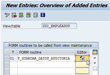 ABAP-New-Entries-Overview-Added-Entries-4